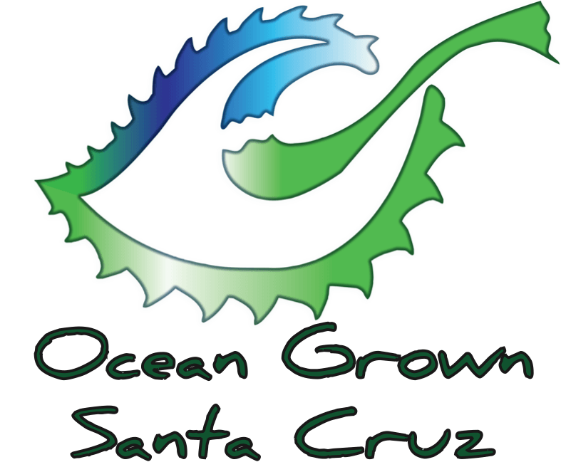Ocean Grown Santa Cruz