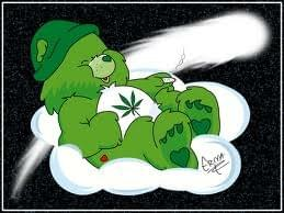 Go Green Bear